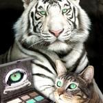 Tabs for Too Faced Sumatran Tiger