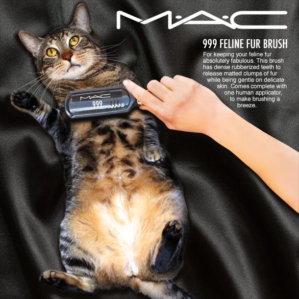 Tabs for the MAC Feline Fur Brush