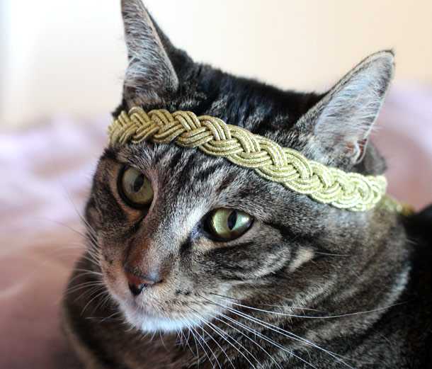 tabs wearing the sephora metallic braided headband