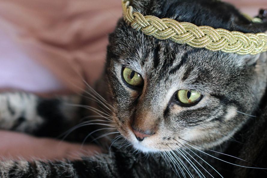 tabs wearing the sephora metallic braided headband