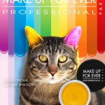 Tabs for Make Up For Ever Cat Ear Shadows