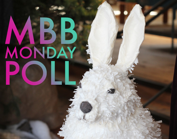 the makeup and beauty blog monday poll for november 26, 2012
