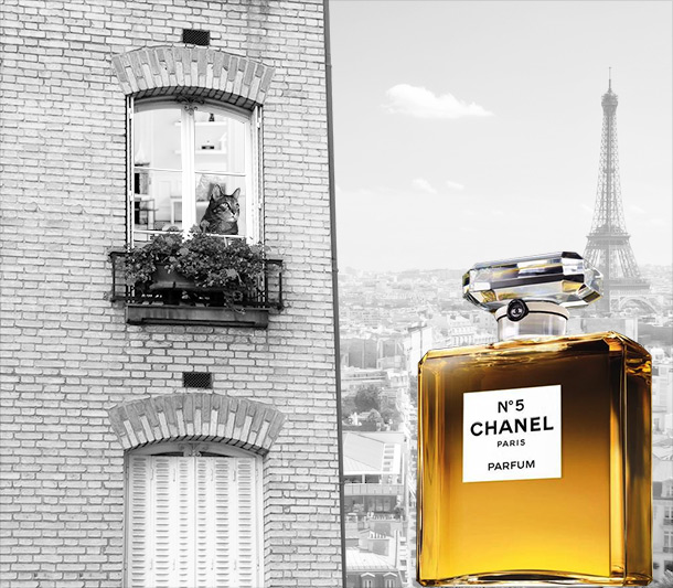Tabs for Chanel No. 5