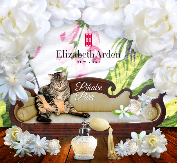 Tabs for Elizabeth Arden Pikake Purr Perfume