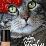 Tabs for Laura Mercier Holiday Flawless Face Foundation