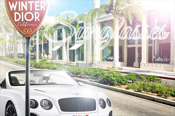 Tabs for Dior California Winter Sunglasses