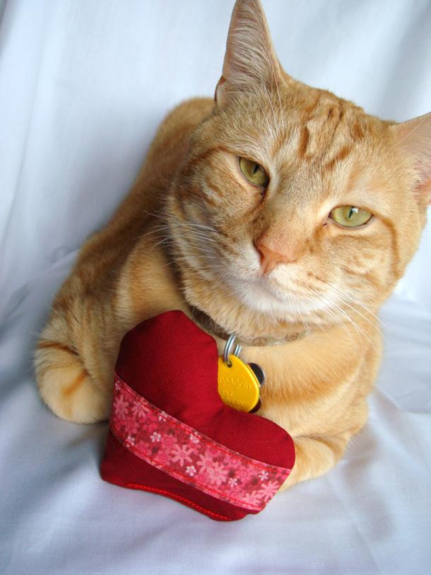 10 Catnip toy cat heart toy