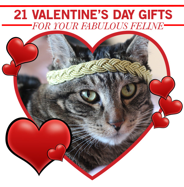 21 Valentine's Day Gifts for Your Fabulous Feline