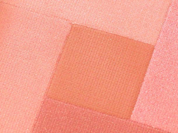 Palladio Herbal Mosaic Powder Desert Rose Closeup