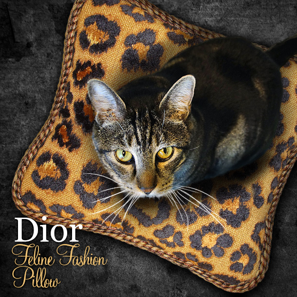 Tabs for the Dior Feline Fashion Pillow