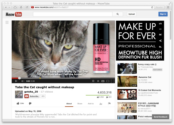 Tabs for the Make Up For Ever MeowTube Fur Blush