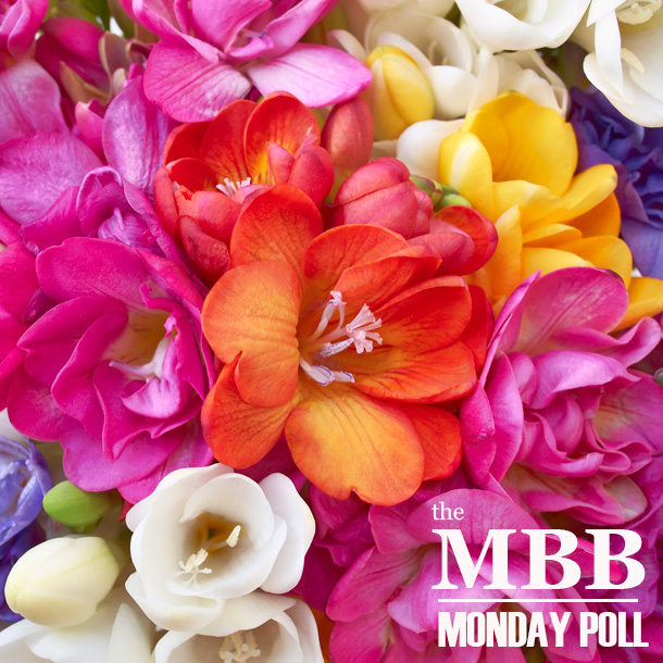 The Makeup and Beauty Blog Monday Poll for March 4, 2013