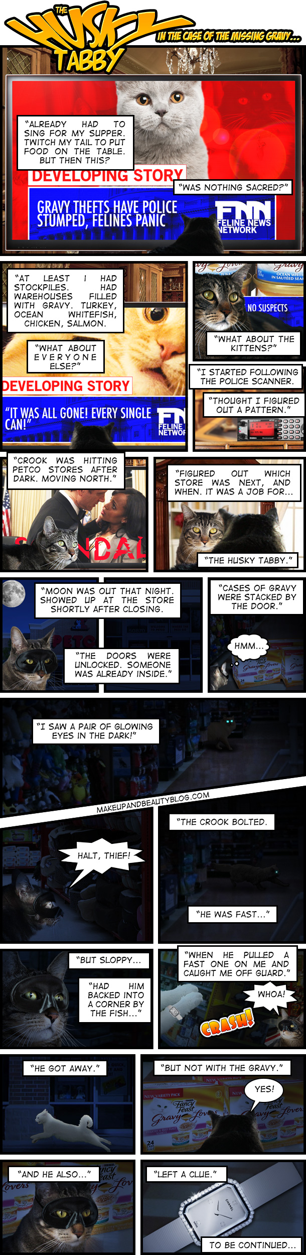 Tabs the Cat in The Husky Tabby: A Makeup and Beauty Blog Comic