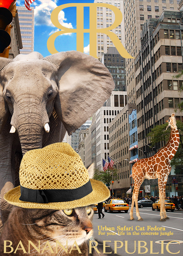 tabs-banana-republic-urban-safari-cat-fedora