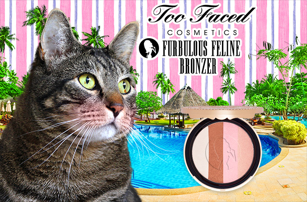 Tabs for the Too Faced Furbulous Feline Bronzer