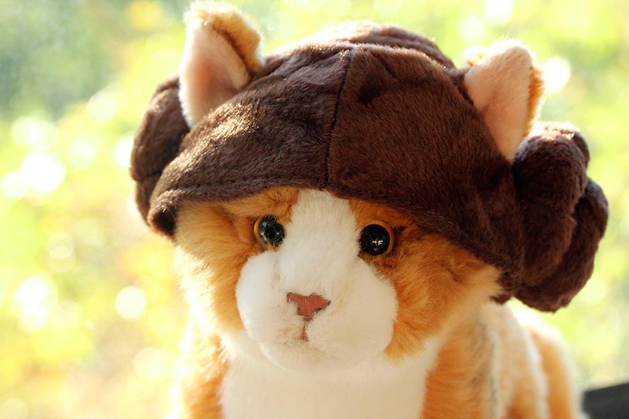 Petco Star Wars Princess Leia Cat Headpiece