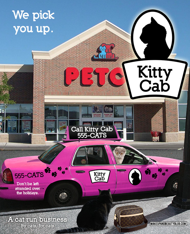 Tabs the Cat for Kitty Cab