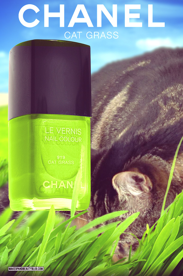 Tabs the Cat for Chanel Le Vernis Nail Colour in Cat Grass