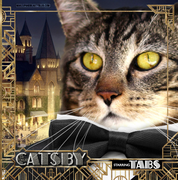 Tabs the Cat starring in The Great Catsby