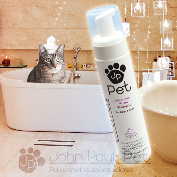 JP Pet Waterless Foam Shampoo Review