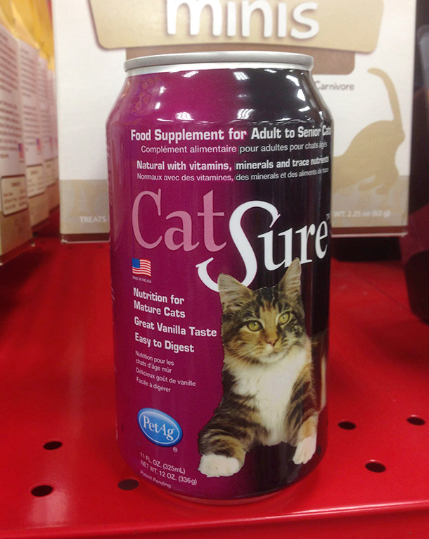 cat-sure-petco-610-2