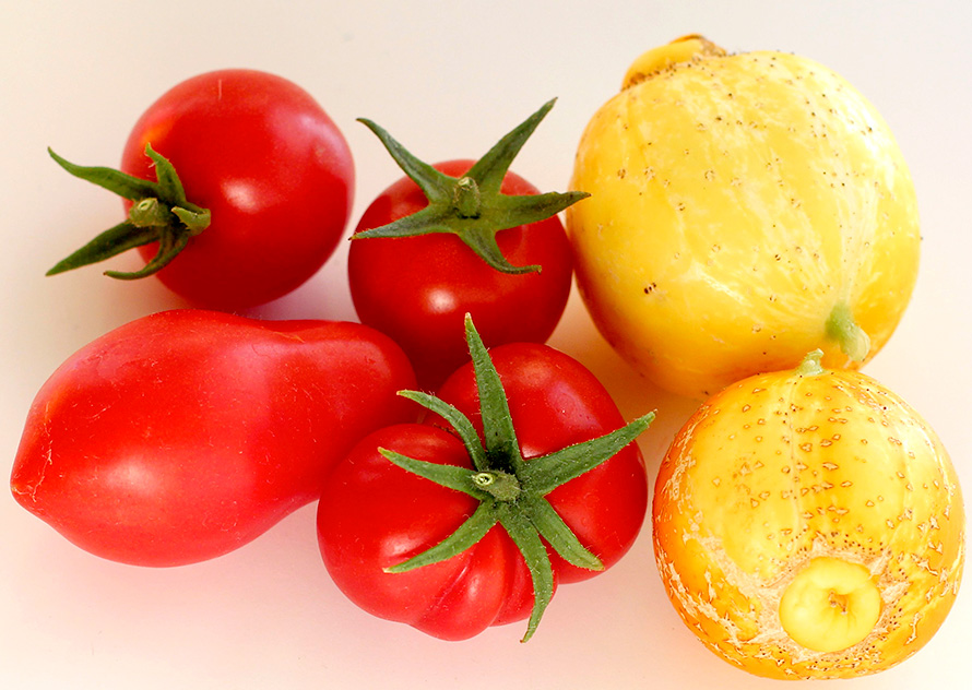 Tomatoes and Lemon Cucumbers (2)