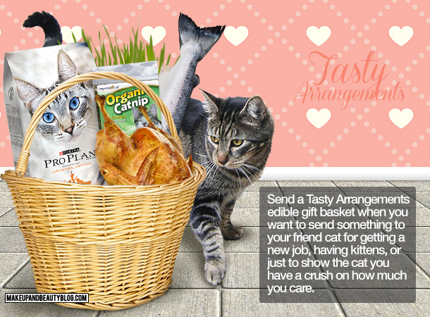Tabs the Cat for Tasty Arrangements Edible Gift Baskets for Cats