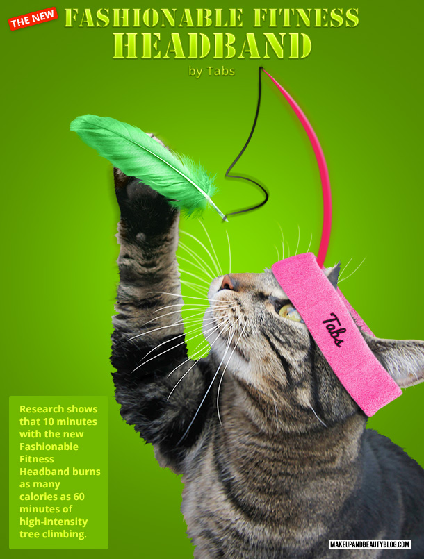 Tabs the Cat for the Fashionable Fitness Headband