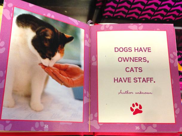 smitten-with-kittens-book-2