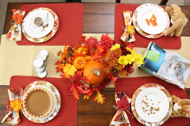 tabs-purina-thanksgiving-10