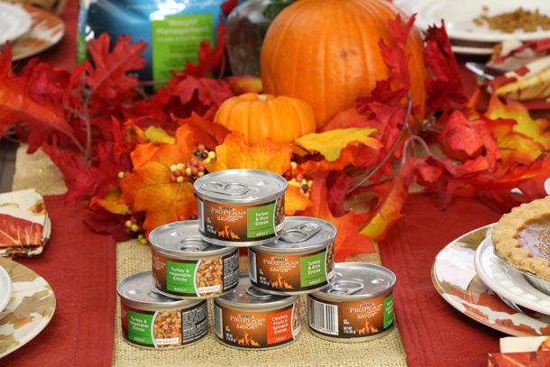 tabs-purina-thanksgiving-2