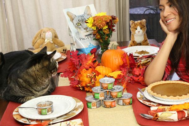 tabs-purina-thanksgiving-9