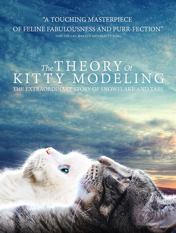 Tabs the Cat, The Theory of Kitty Modeling
