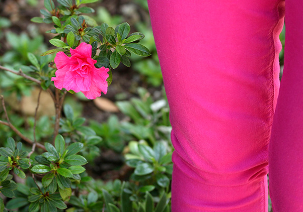 Hot pink flower and matching pants