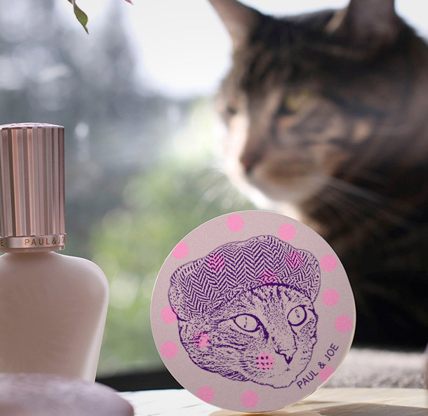 Paul & Joe Protecting Pressed Powder Blush in 0401