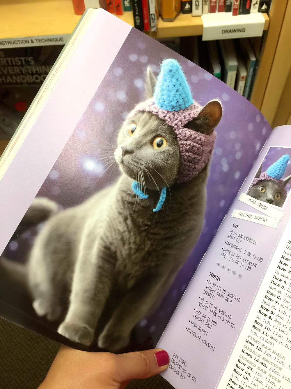 unicorn-kitty