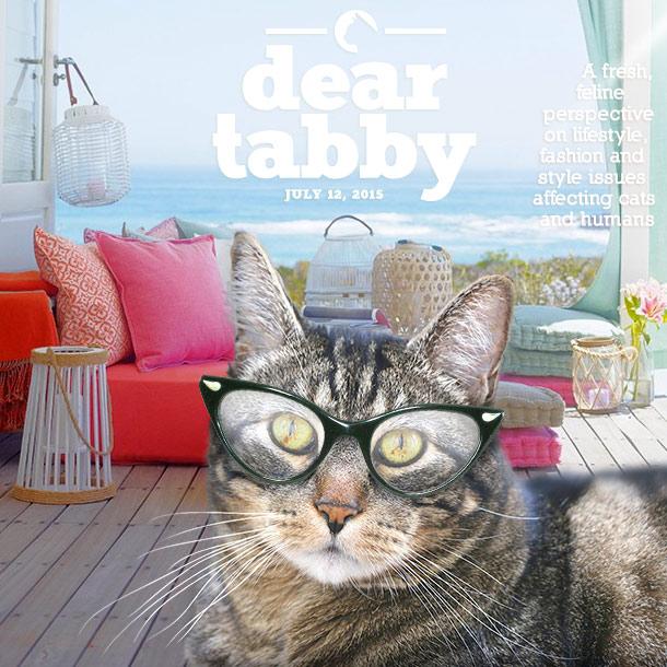 tabs-dear-tabby-summer-2015-b