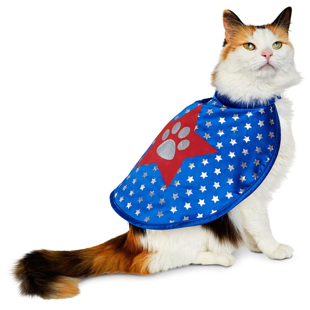 cat-superhero-costume