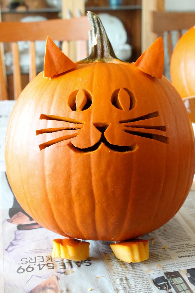 DIY cat jack-o-lantern
