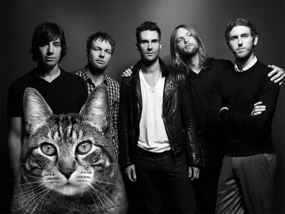 Maroon 5, managed by Tabs the Cat LLC Productions