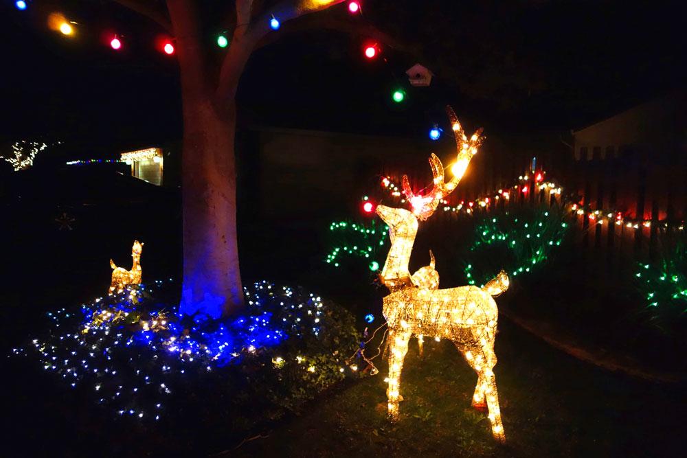 11-christmas-lights-union-city