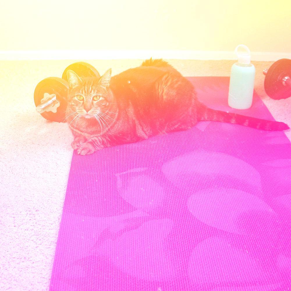 3-tabs-yoga-mat