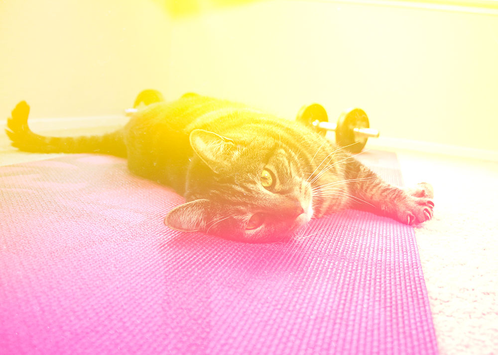 4-tabs-yoga-mat