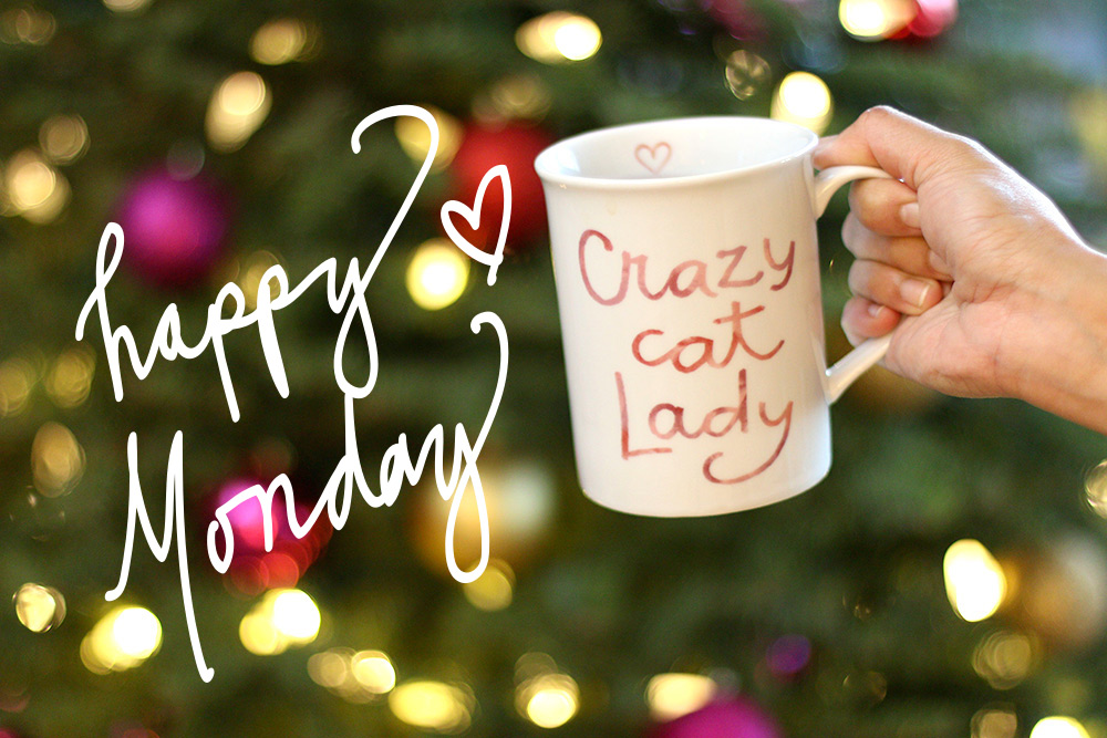 crazy-cat-lady-mug-2