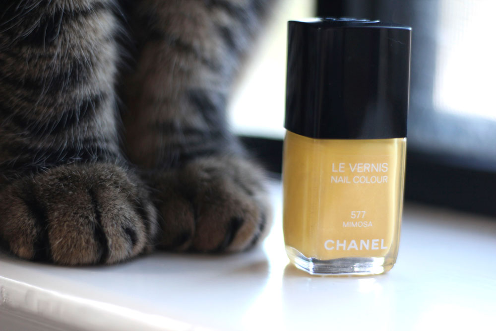 Chanel Le Vernis Nail Colour in 577 Mimosa