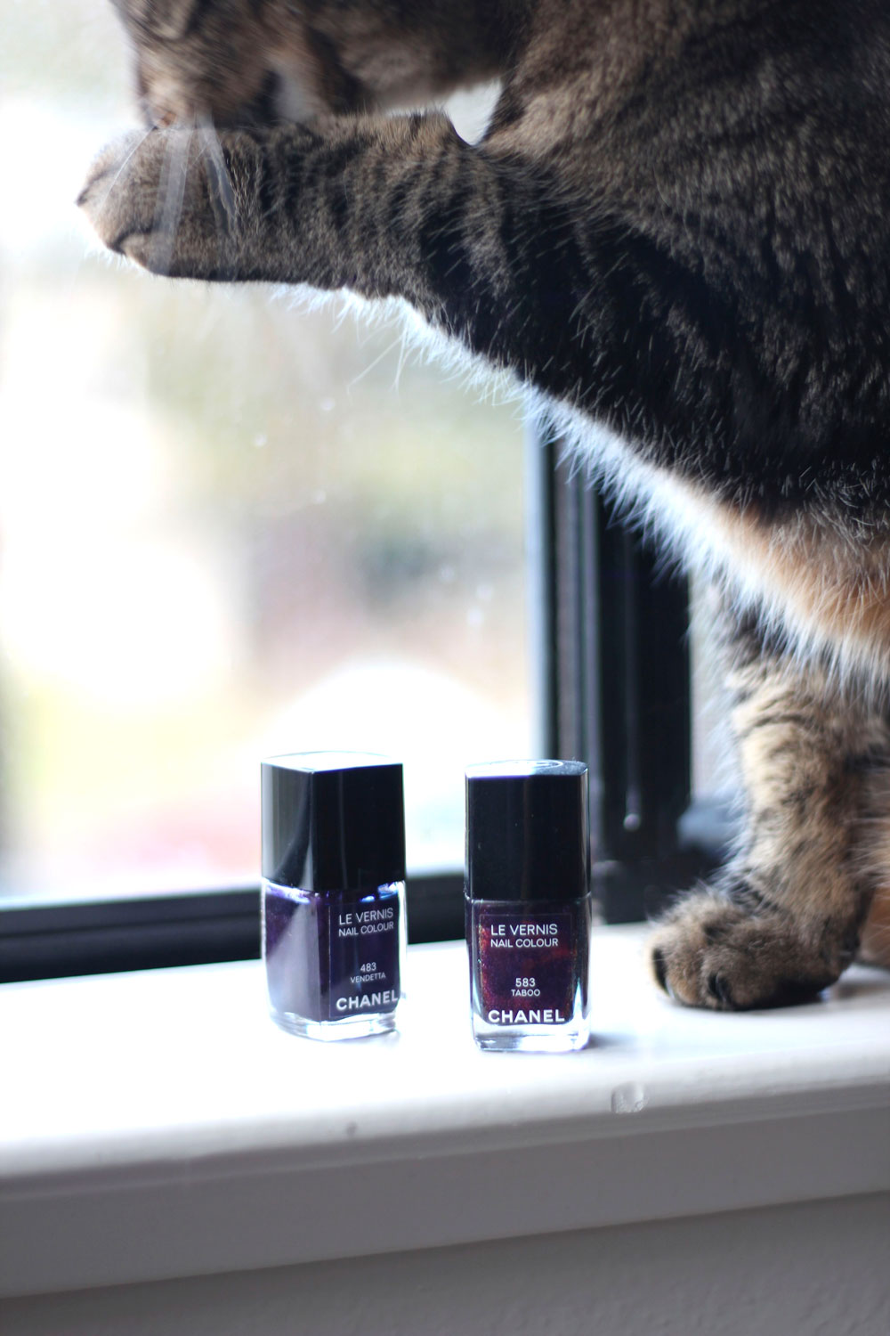 Chanel Le Vernis Nail Colours in 483 Vendetta and 583 Taboo
