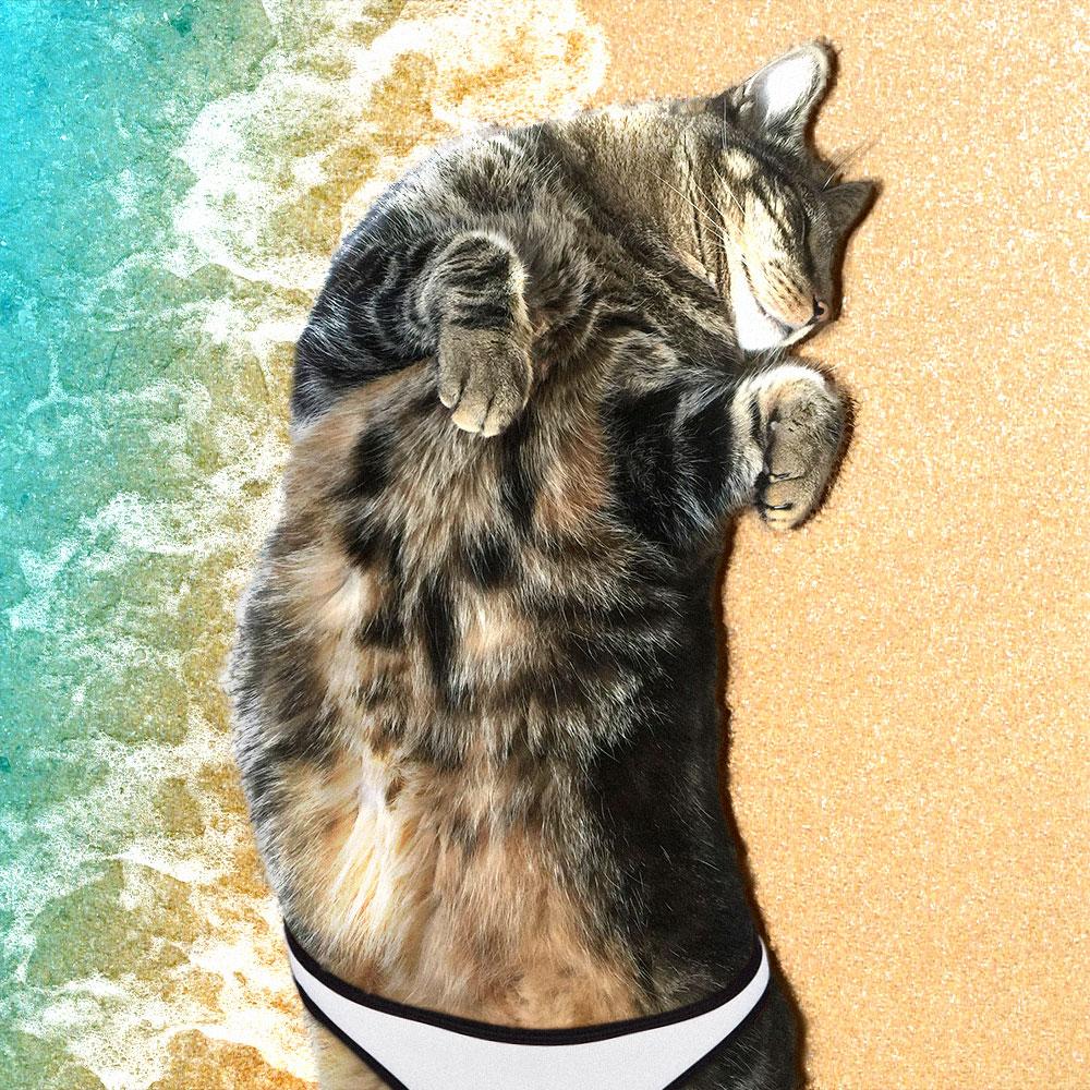 tabs-swimsuit-calendar