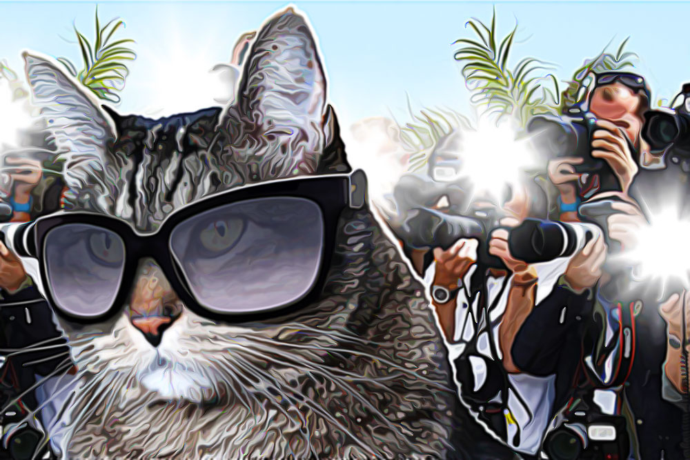 tabs-paparazzi-sunglasses-football-fame