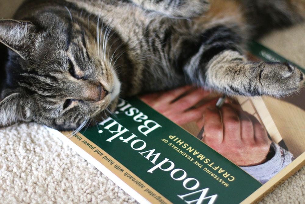 tabs-reading-boring-book