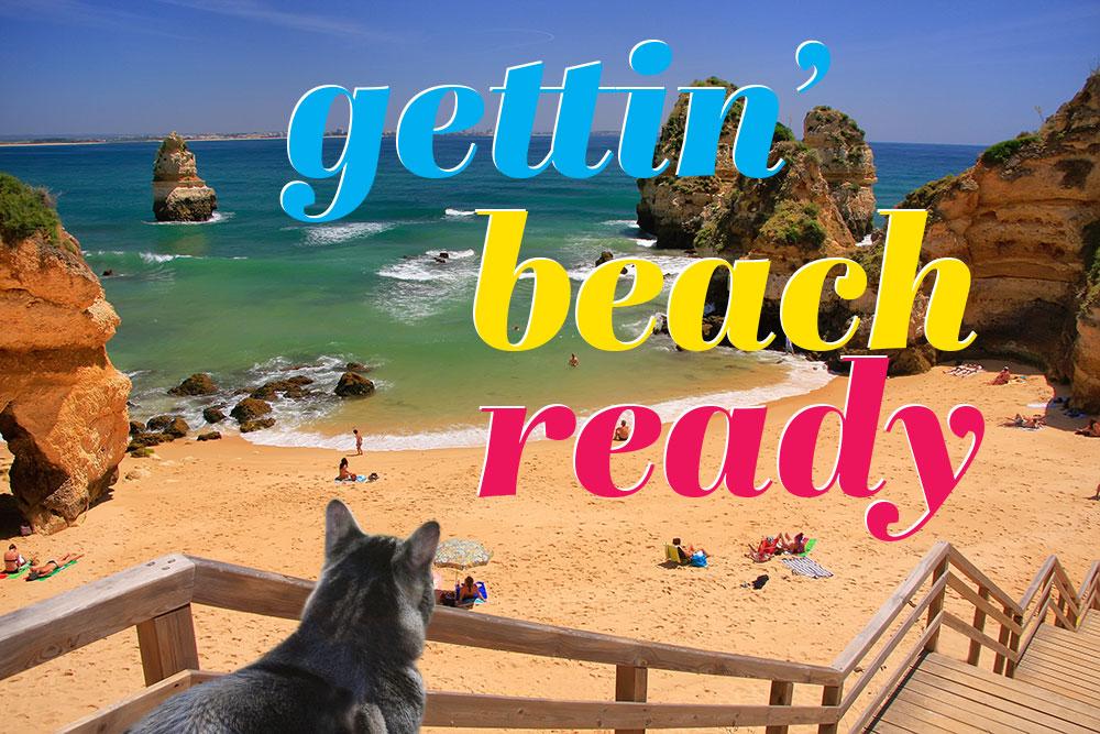 tabs-cat-beach-body-ready-top